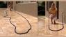 Шланг Magic Hose 15 m